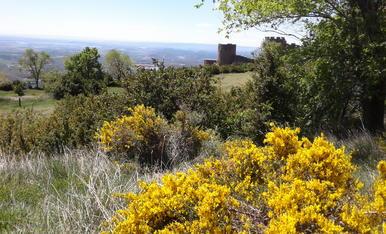 Vista del Castell de Loarre