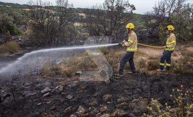 © Primer incendi forestal de l'estiu