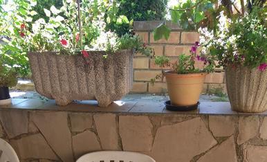 Les meves vacances a casa al, jardí, al pati o a la terrassa, pro sempre amb bona companyia, el diari Segre no pot faltar cap dia.