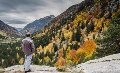 Paleta de colors a la Vall de Boi, a prop del Balneari de Caldes.