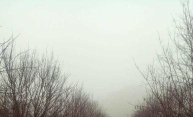 Boira en camps de Montoliu de Lleida