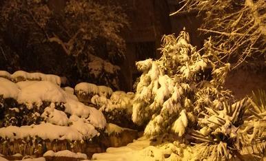 La Nerea gaudint de la neu