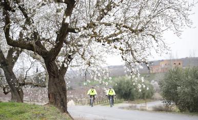 © El bon temps avança la floració