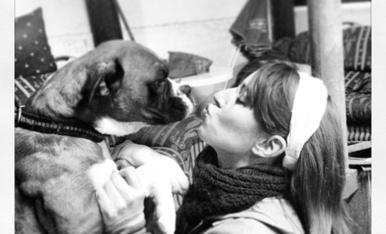 Tuc ahora vive en el cielo rodeado de sus seres caninos