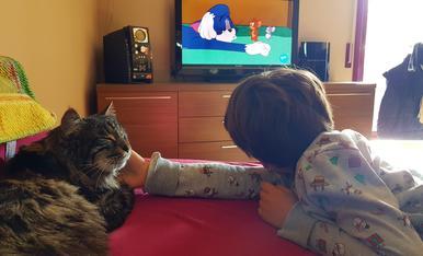 Qué bé s'ho passen el Guifré i el Fum mirant el Tom i Jerry