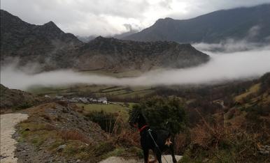 La petita Nord al Pallars Sobirà