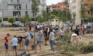 Vista general dels veïns de Joc de la Bola plantant arbres al solar del carrer Alcalde Pujol.