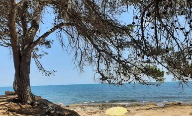 Un raco espectacular per gaudir d' un dia a la platja