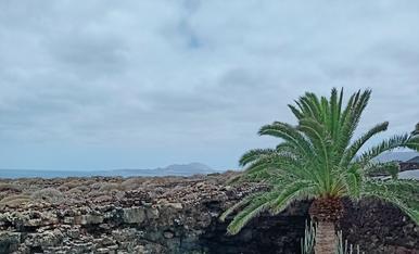 Visita a los Jameos del Agua (Lanzarote). Les nostres vacances d'aquest 2021.