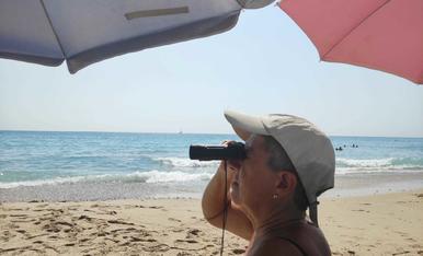 Barco a la vista a la platja de l' Almadrava