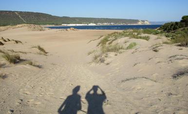 Arenales y dunas.  Costa de Cádiz en las proximidades del faro de Trafalgar.