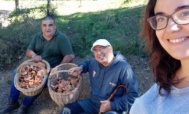 Un bon grapat de rovellons caçats a Vilaller.