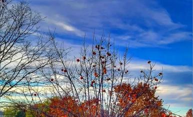 Tu tiempo, el otoño - 2021