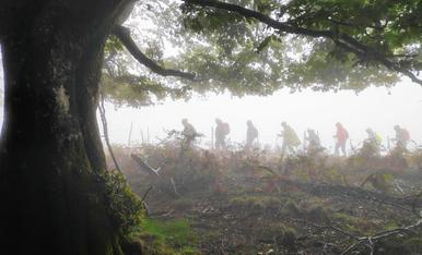 Caminants en la boira, a tocar el Coll de Bracons (LaGarrotxa-Osona)