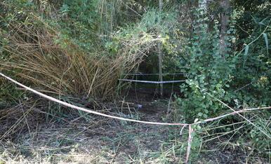 El cadàver estava enterrat en aquest lloc de vegetació frondosa molt a prop del riu a Albesa.