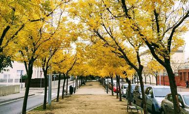 El carrer Victoria Kent de Lleida s'omple a groc.