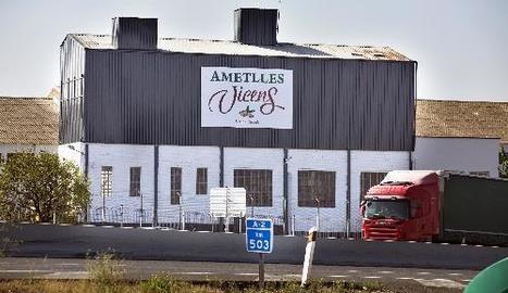 Imatge del nou centre de producció d'ametlles a Vilagrassa.