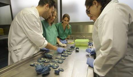 Alumnes de Medicina fent pràctiques el curs passat.