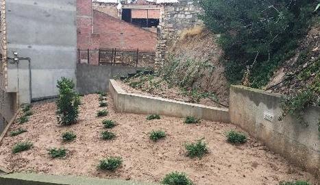 Imatge de la nova zona verda del carrer Arribas de Fraga.