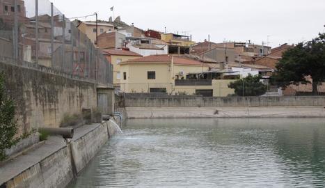La zona de la bassa d'aigua d'Almenar que es rehabilitarà.