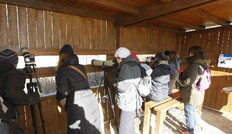 Participants en el cens d'aus que va tenir lloc a la Mitjana, en un moment de l'observació.