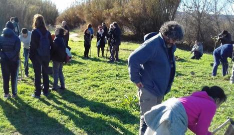 L'activitat que es va celebrar diumenge per plantar arbres a la ribera del Cinca.