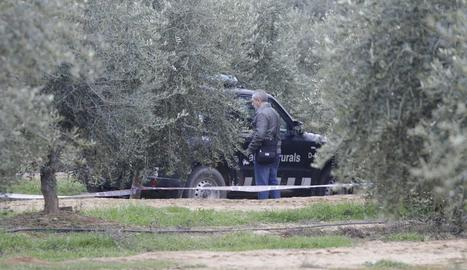 Un caçador confessa haver mort dos agents rurals en una discussió a Aspa