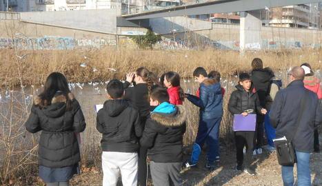 Observacions d'aus al costat del riu d'escolars del Camps Elisis