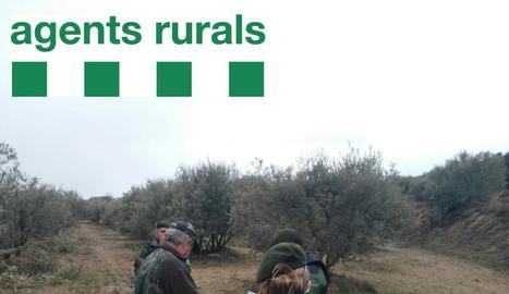 Agents rurals, ahir, en una inspecció de caça a Cubells.
