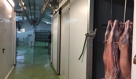 Imatge de l'interior de l'escorxador de l'Alta Ribagorça.
