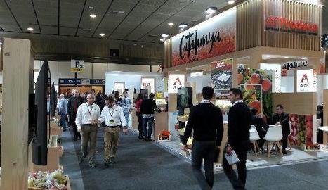 Imatge de l'estand de Prodeca a Berlín, que agrupa diferents empreses.