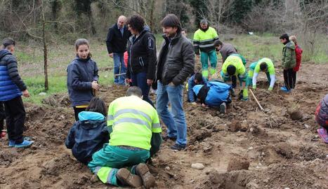 Alguns dels alumnes plantant un arbre a les Franqueses.
