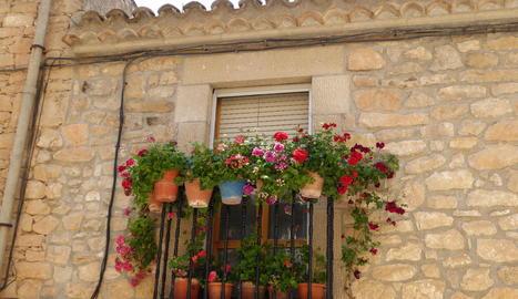 Balcó florit al poble de Tarrés, comarca de les Garrigues.
