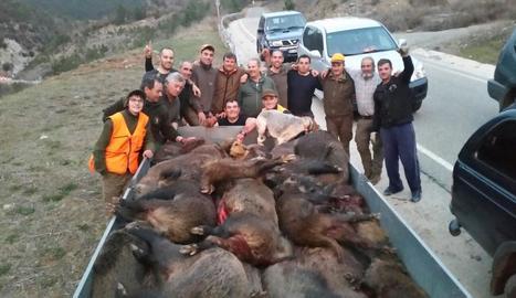 Batuda de caça de senglars a l'Alt Urgell, el maig del 2016.