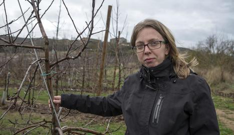 Maria Casoliva al seu camp de fruiters a la població de Sanaüja, a la comarca de la Segarra.