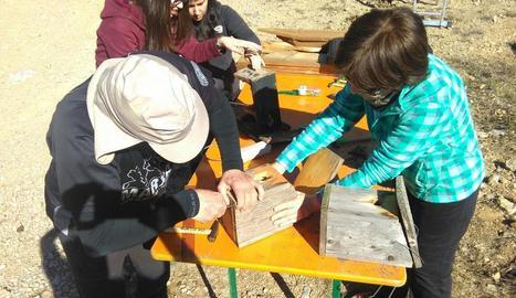 Alguns dels voluntaris preparant les caixes niu, ahir a la muntanya d'Alinyà.