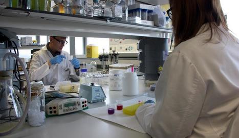 Imatge d'arxiu d'investigadors de l'IRBLleida treballant en un laboratori.