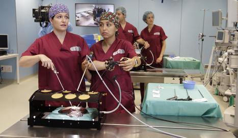 Pràctiques de tècniques quirúrgiques al Creba de Torrelameu.
