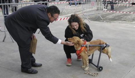 Nombrós públic ahir a Fira Natura de Lleida (esquerra), que va acollir a l'exterior un espai per promoure l'adopció d'animals de companyia (dreta).
