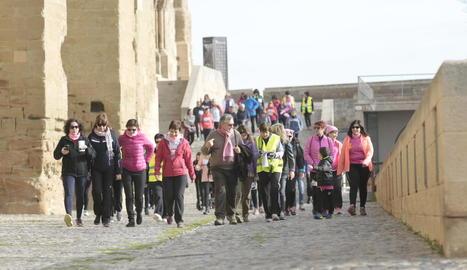 Foto de família davant de la Seu Vella dels participants en la caminada.