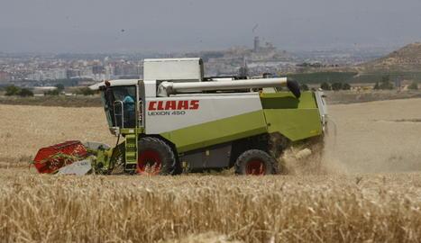 Una explotació agrària a Lleida
