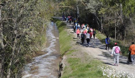 Les visites als camps en floració han sigut habituals aquest cap de setmana al Segrià. A les imatges, Torres de Segre (a dalt esq.), Maials (a baix esq.) i Puigverd de Lleida.