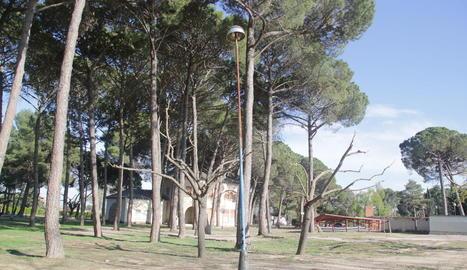La zona de l'entrada del parc de les Basses, en una imatge presa ahir.