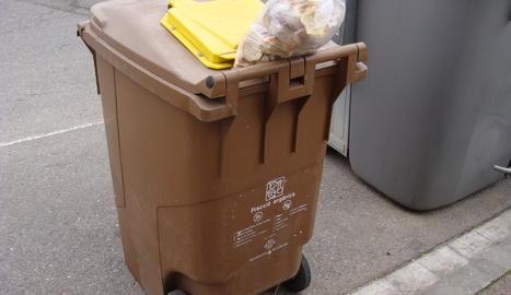 Un contenidor d'orgànica.