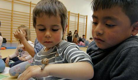 La sessió conjunta va versar sobre els éssers vius, per la qual cosa els alumnes d'Educació van organitzar tallers amb animals per als nens.