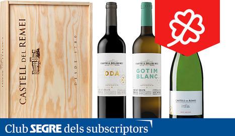 Lot que inclou una ampolla de vi negre Oda, vi blanc Gotim Blanc i cava Brut Nature.
