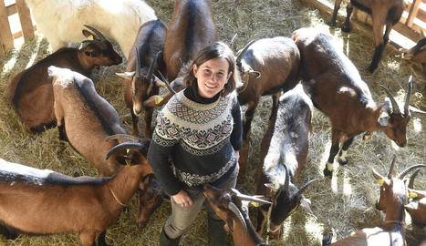 De zero. Les cabres només tenien un mes i mig quan se'n va fer càrrec. Al juny pariran les primeres.