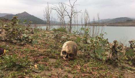 Les restes van ser localitzades per pescadors al costat de Rialb.