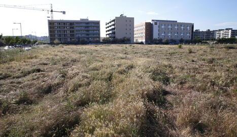 Vista de la zona on Leroy Merlin preveu obrir un establiment de més de 8.000 metres quadrats.