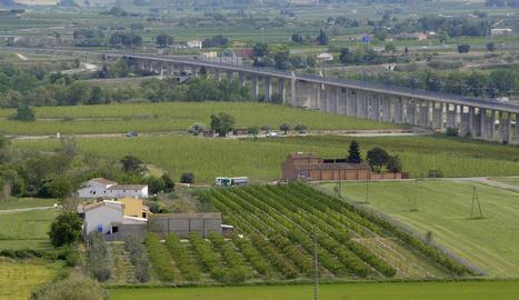 Vista de parcel·les productives de l'Horta de Lleida, situades al costat del 'bypass' de l'AVE a Rufea.